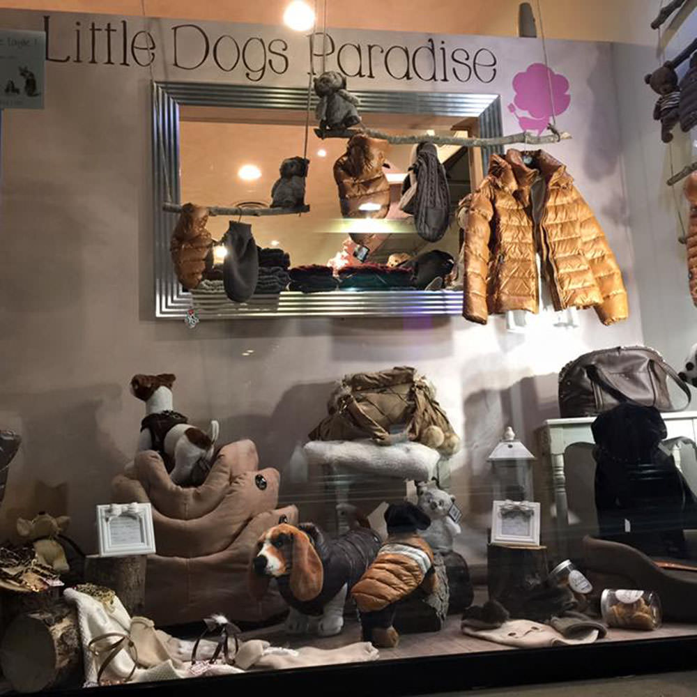 Little Dogs Paradise